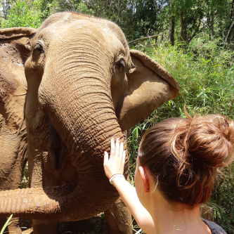 To Cambodia sustainably and for an authentic experience!
